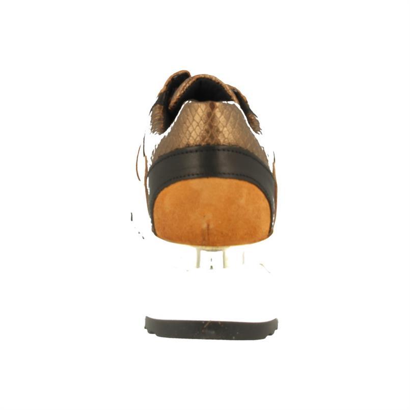 Bull Boxer 323000E5L_CAMLTD52