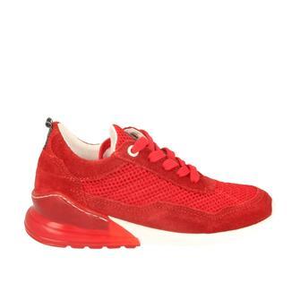 Red-Rag 13451